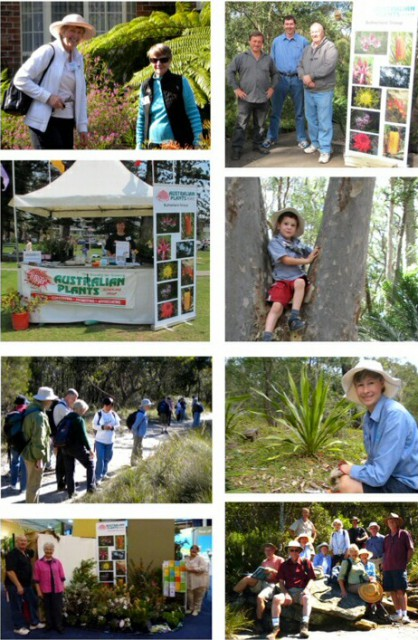 The Australian Plant Society runs great events