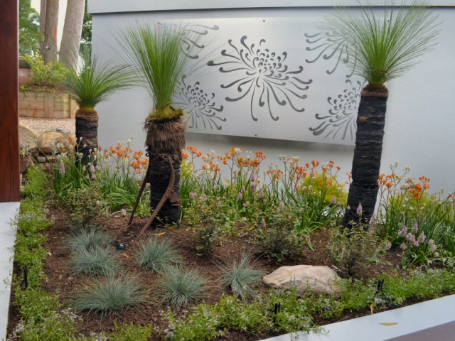 Native garden by Brookes Blooms with grass trees, kangaroo paws, lomandras