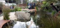 phillip johnson chelsea garden featured a natural billabong pool using recycled water