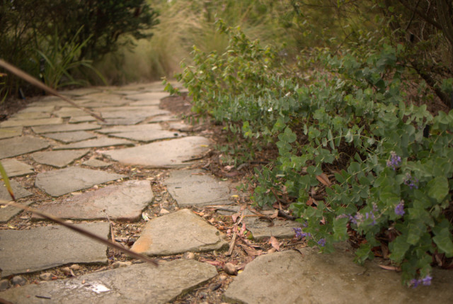 Pathways in your native garden gardening with angus - Pictures of stone pathways ...