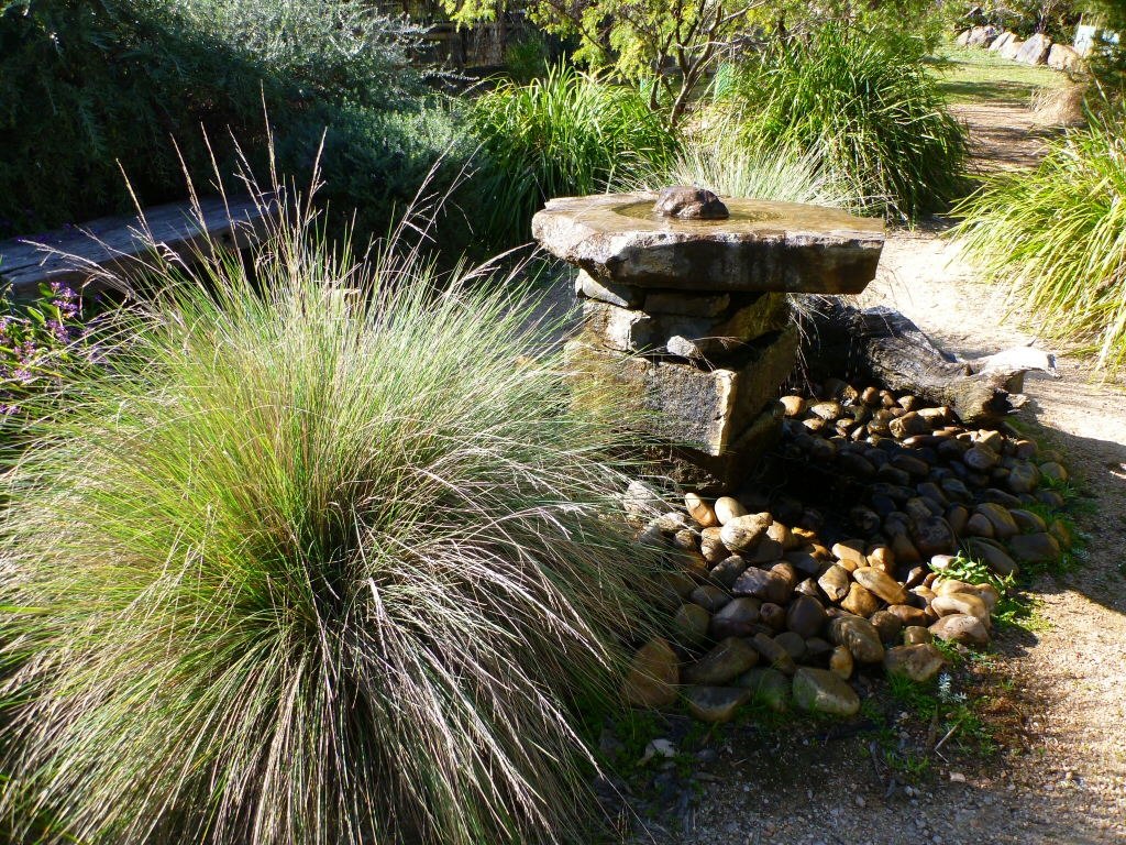 Water features and native plants gardening with angus for Water features