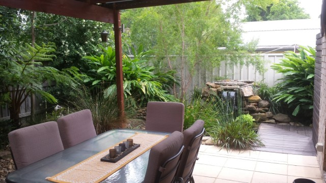 Waterfall feature in a small space by Ecolibrium Landscapes with Alpinia, tea tree, native rush and Australian ferns