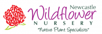 Newcastle Wildflower Nursery logo with waratah