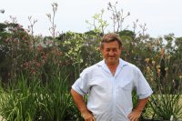 Angus Stewart amongst his tall and tough kangaroo paws