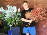 Australian cut flowers