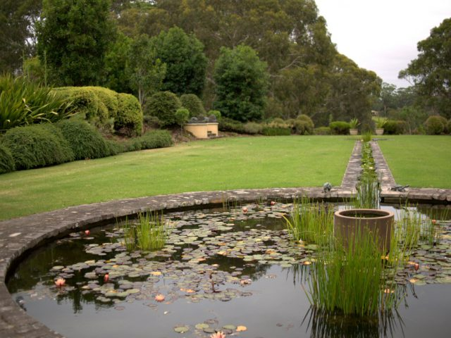 Christina Kennedy garden, NSW formal garden with Australian plants and pond