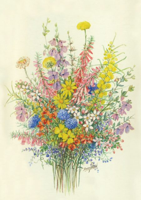 Victorian High Country wildflower bunch by Daisy Wood