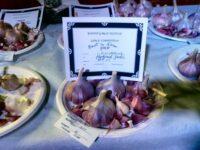 Garlic varieties from Koonya Garlic Festival