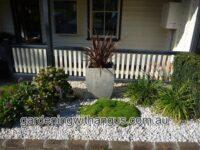 Scleranthus biflorus - cushion bush