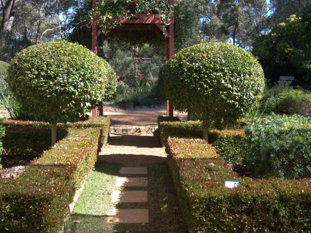 The New Formal Garden: With Australian Plants | Gardening ...