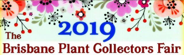The Brisbane Plant Collectors Fair